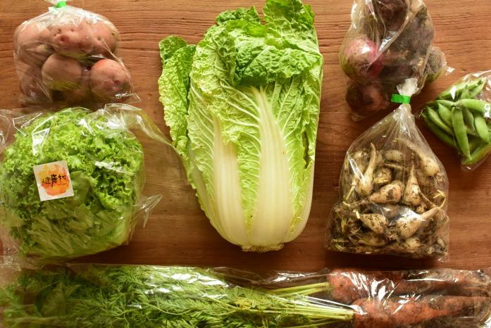 野菜の宅配(旅する八百屋ミコト屋さん)