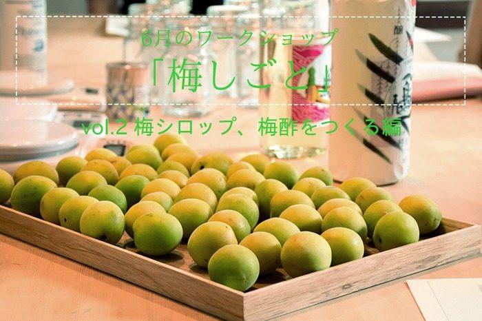 特集|ワークショップ 6月のワークショップ 梅しごとvol.2 梅シロップ、梅酢をつくる編